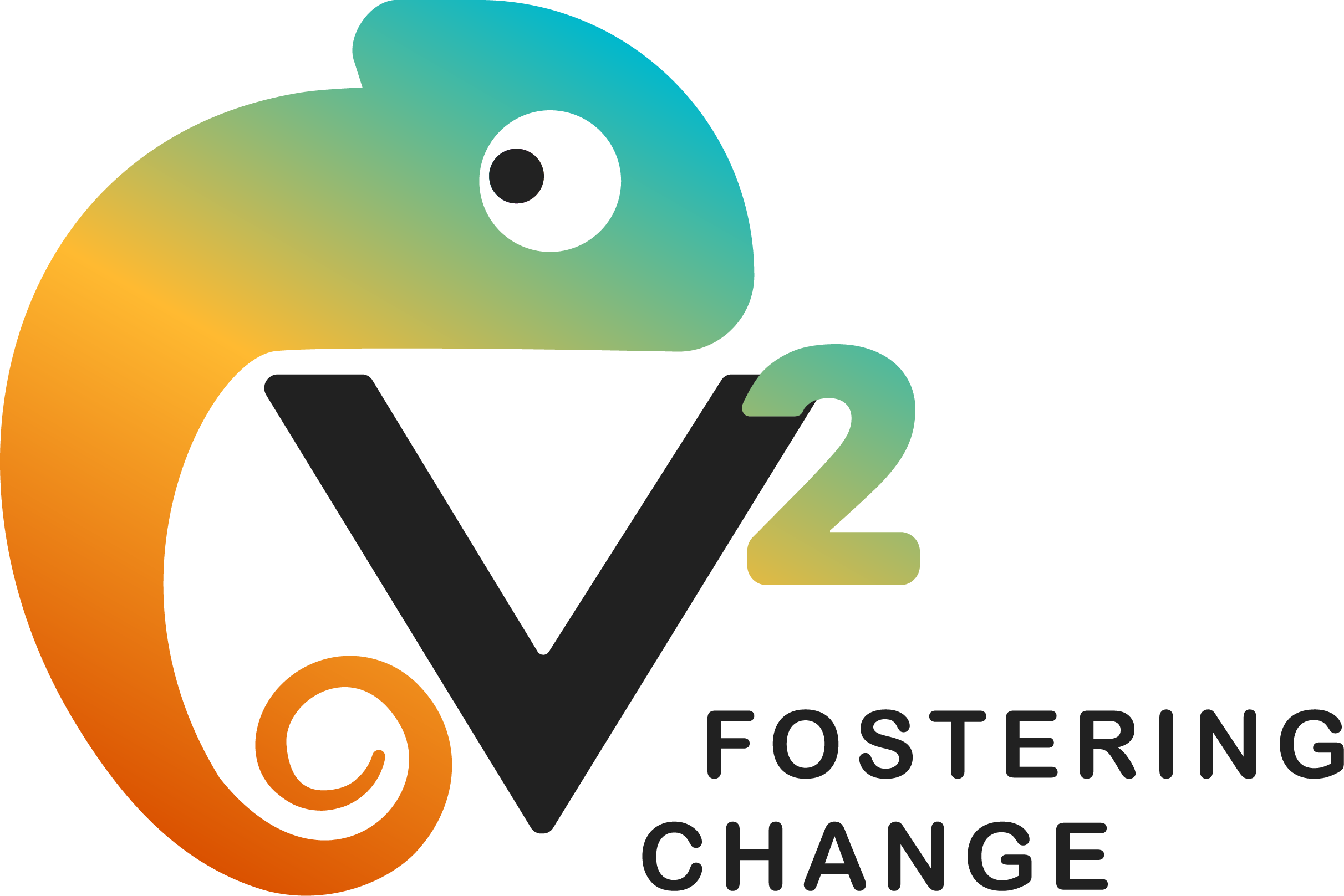V2 National Association of Foster Youth Inc.
